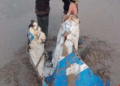 Descartaron que los restos metálicos hallados en Holanda sean del avión que trasladaba a Emiliano Sala