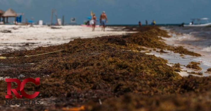 Clausuran playas y balnearios por incremento de Covid-19 en el país