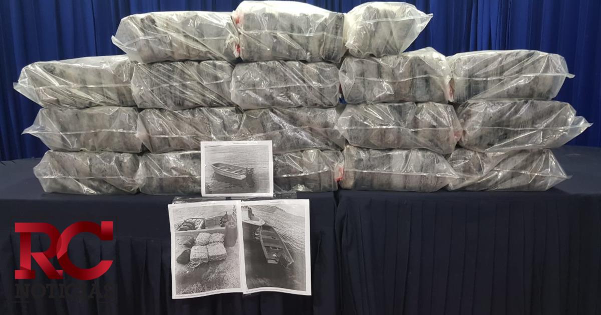 Consejo Nacional de Drogas busca evitar la desinformación en materia de drogas
