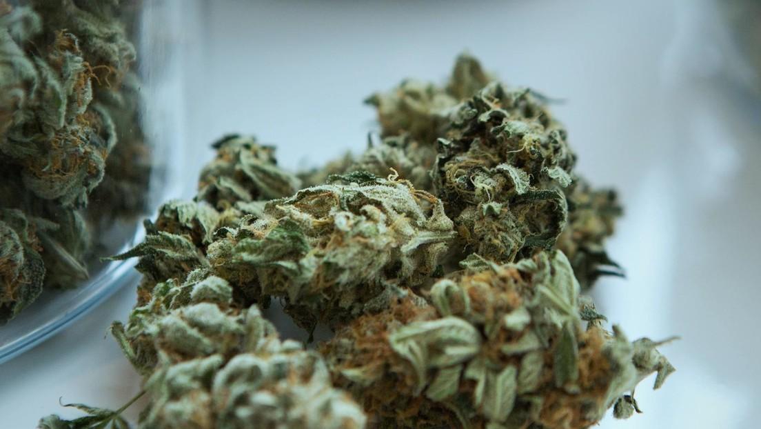 Descubren cannabis en un antiguo santuario bíblico que habría usado la planta con fines alucinógenos