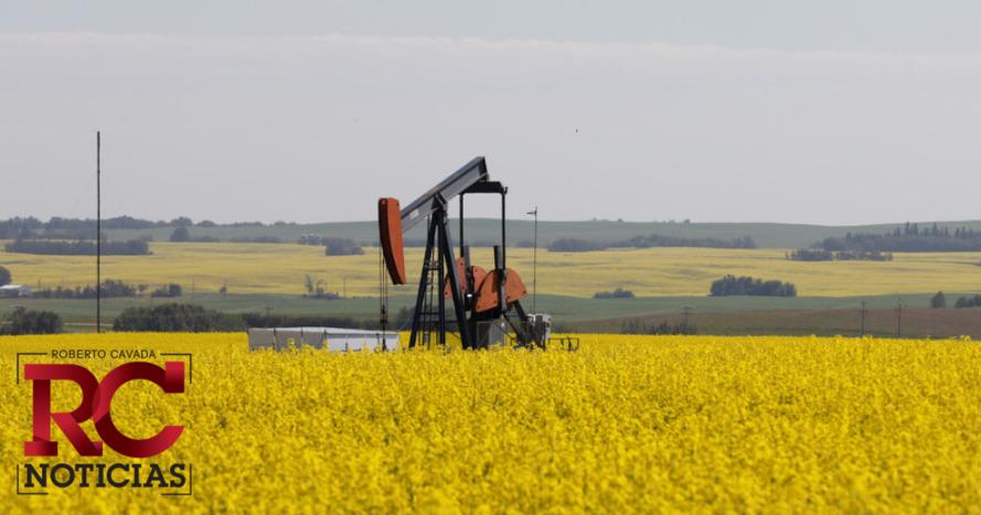 Alza de reservas de crudo en EE.UU. luego de cinco semanas de baja