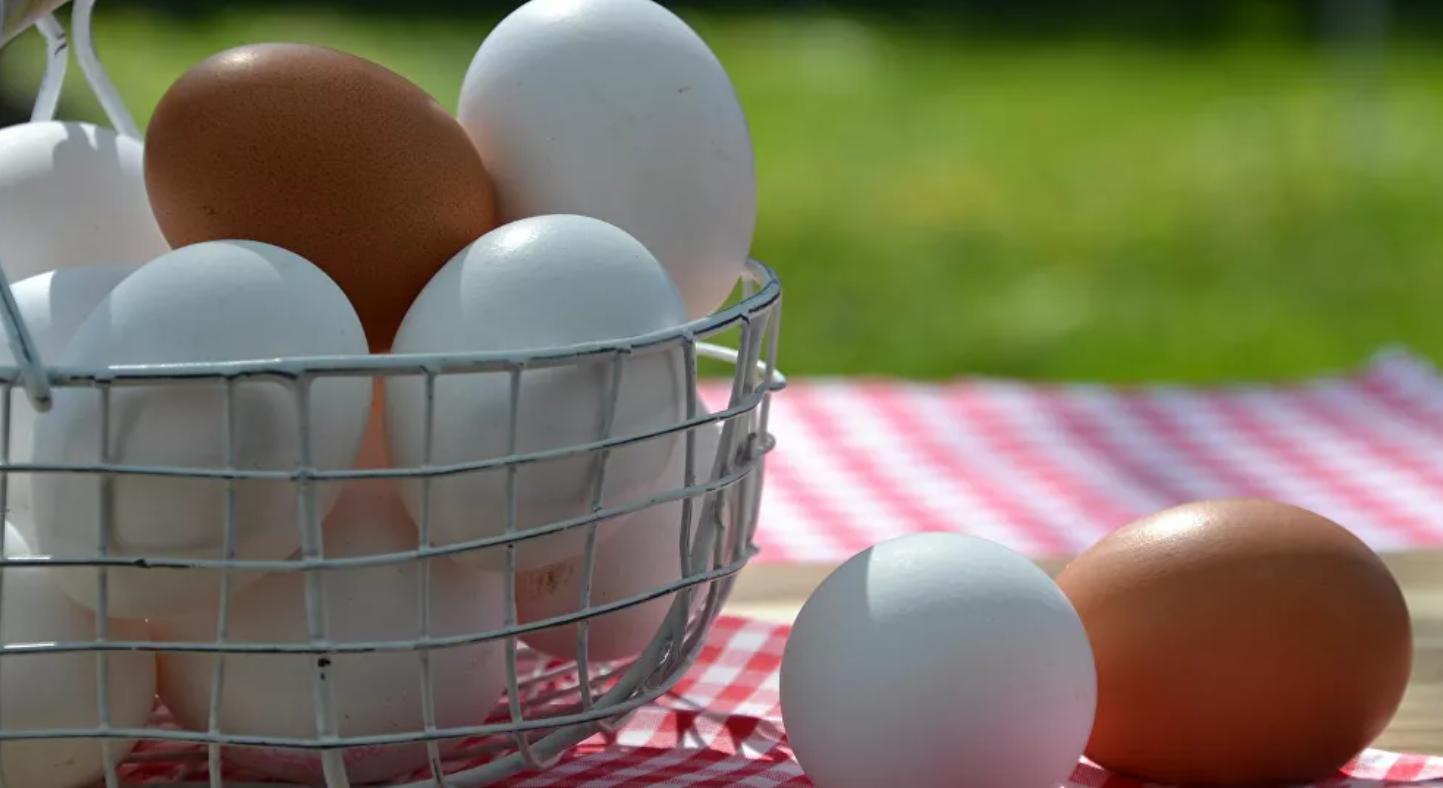 Blancos o marrones, ¿qué huevos son mejores?