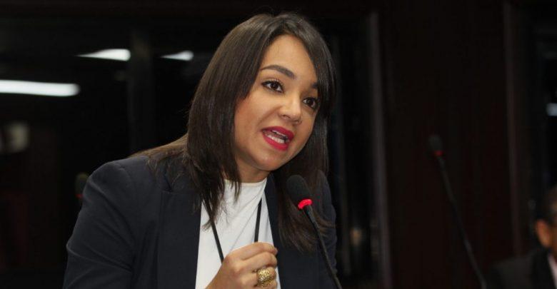 Faride dice grupos de odio que envenenaron a Peña Gómez pretenden fabricar enfrentamiento entre ella y  Abinader