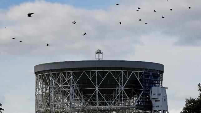 Descubren inusuales ráfagas de radio que provienen del espacio y se repiten cada 157 días