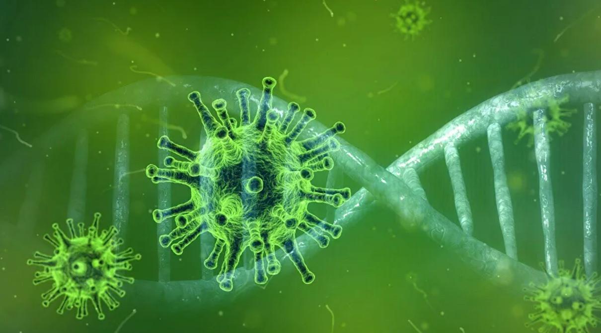 Los científicos descubren un alimento que combate el COVID-19 mejor que los medicamentos