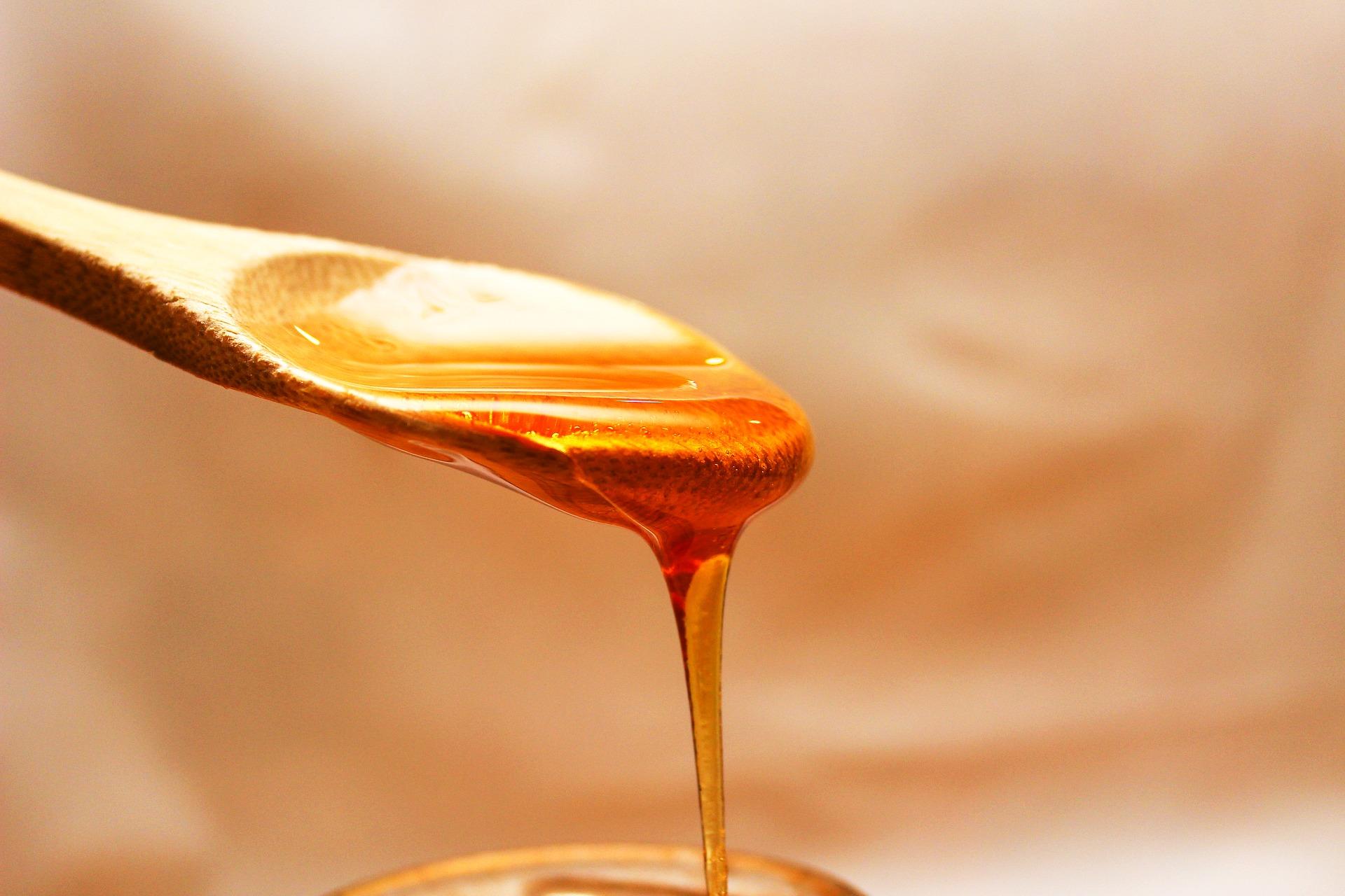 Afirman escasea la miel de abejas de producción nacional por aumento en consumo y cosecha insuficiente