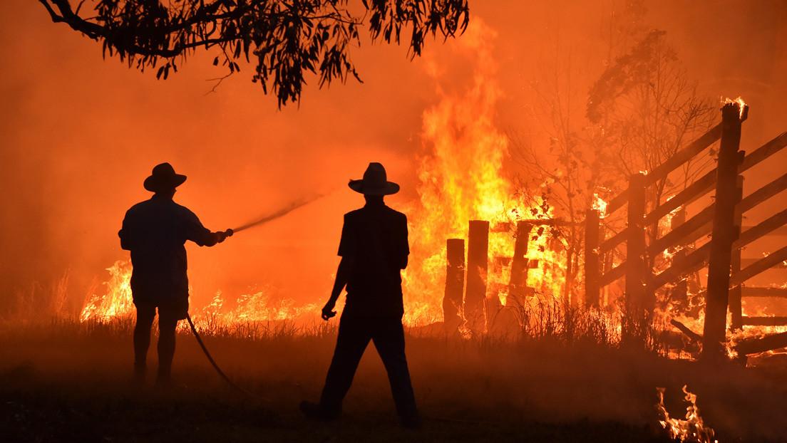 """Un informe oficial advierte a Australia que debe prepararse para incendios forestales """"potencialmente peores"""" que los de 2019"""
