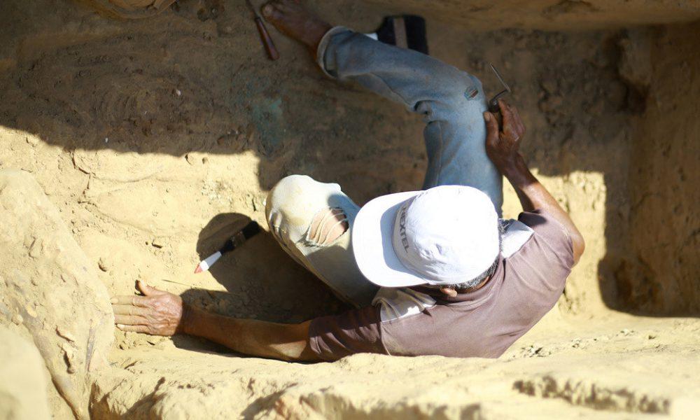 Descubren una ofrenda con 11 cocodrilos de más de 2.000 años en Egipto