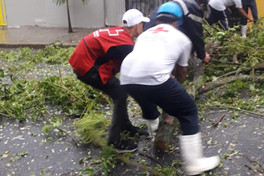 Cruz Roja Dominicana realiza evaluaciones de daños tras paso de tormenta Laura