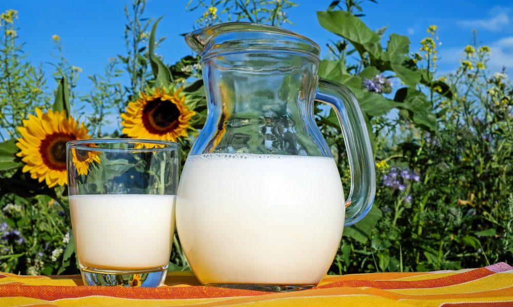 El sorprendente remedio contra el coronavirus: leche de vaca