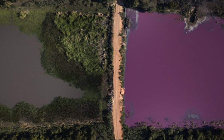 Contaminación tiñe de púrpura laguna en Paraguay