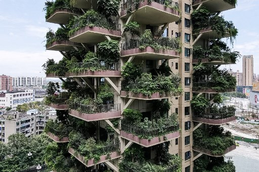 Video | Las plantas invaden una residencia de inmuebles en China