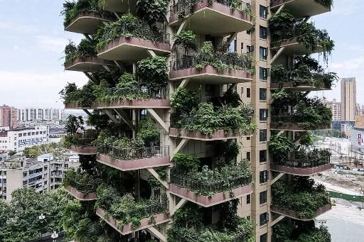 Video | Las plantas invaden una residencia de inmuebles en China