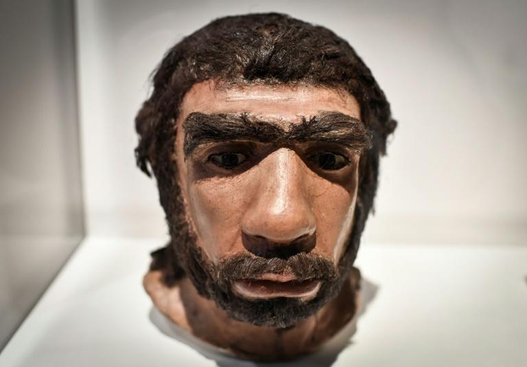 El ADN heredado del Neandertal puede provocar manifestaciones más graves de covid-19