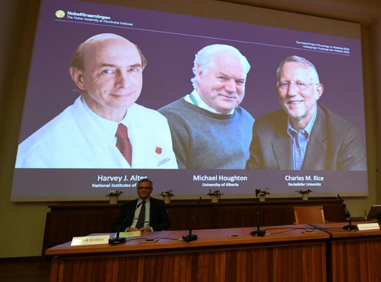 Nobel de Medicina para tres descubridores del virus de la hepatitis C, en plena pandemia