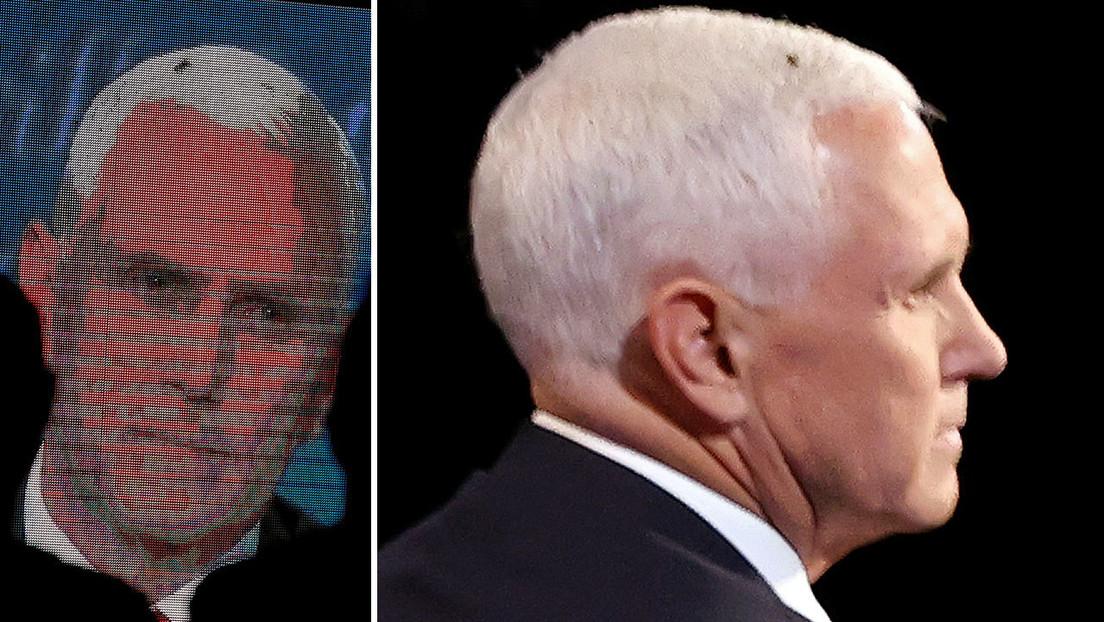 Video | Una mosca en la cabeza de Pence se roba el 'show' durante el debate con Harris