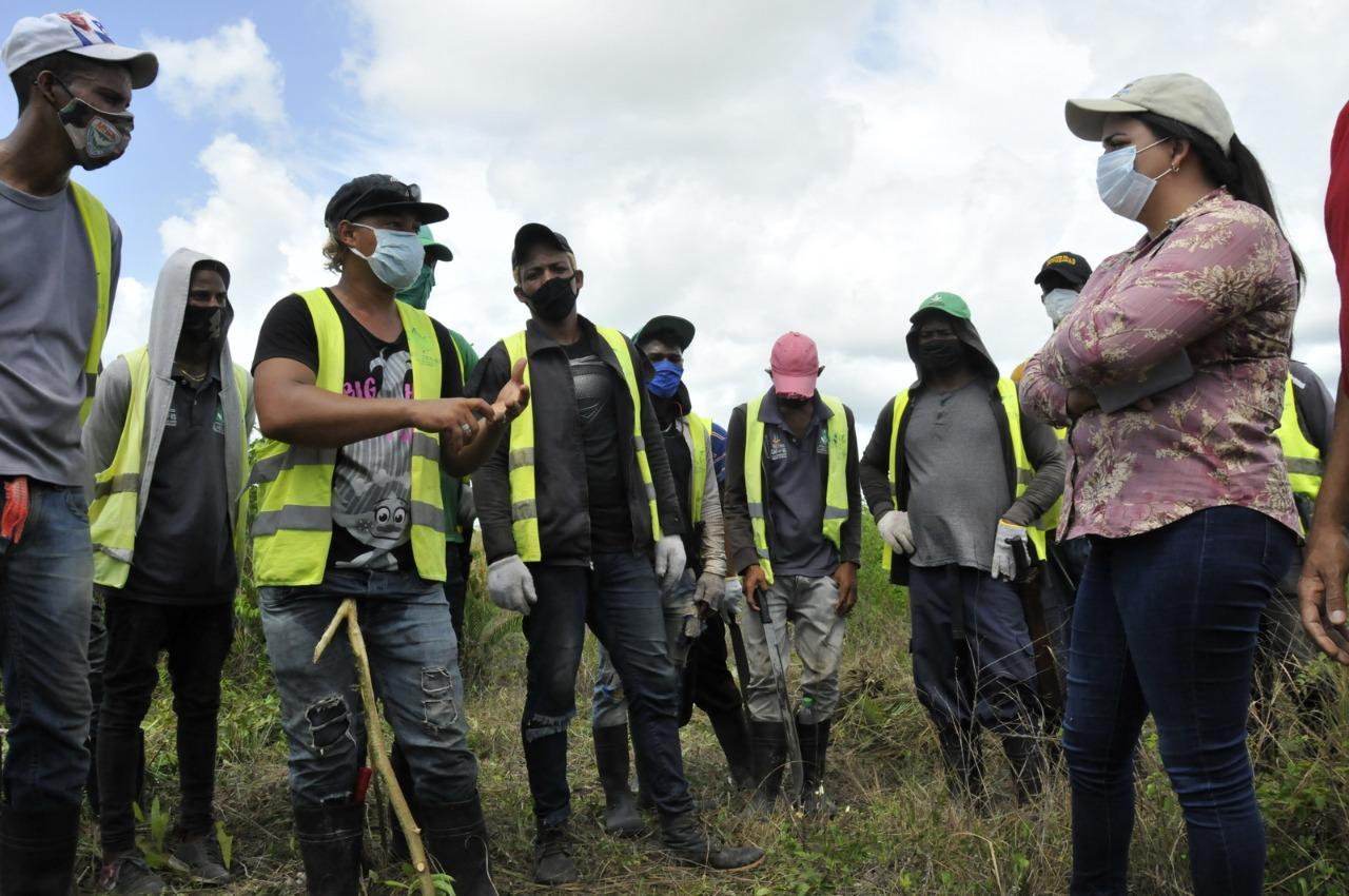 Agricultura: RD continúa libre de mosca del Mediterráneo