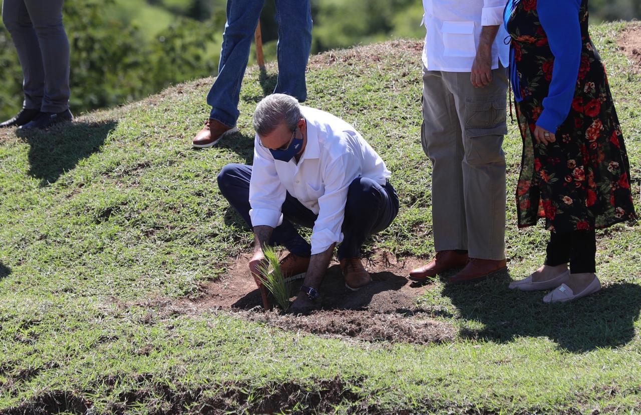 Presidente Abinadery Medio Ambiente unen esfuerzos para aumentar cobertura boscosa del país