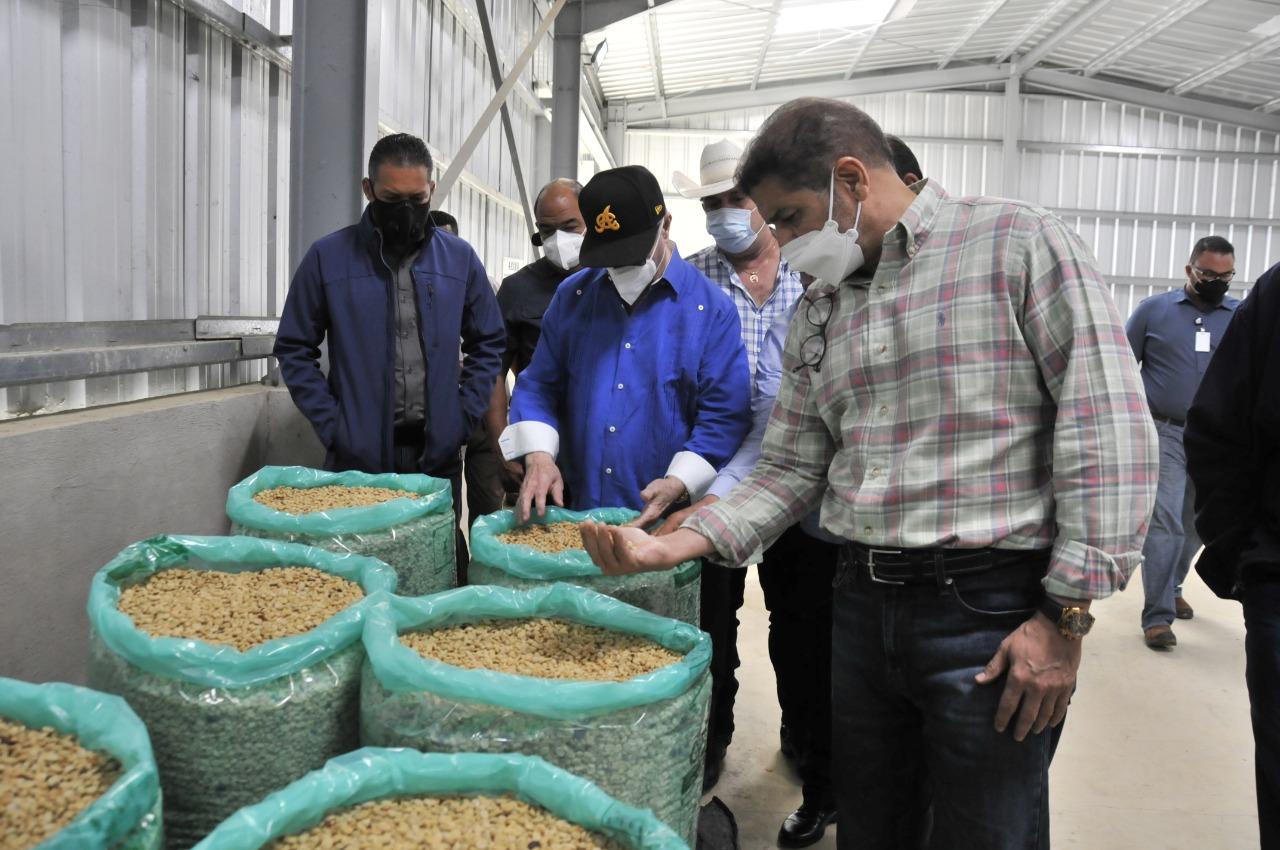 Ministerio de Agricultura invierte en la recuperación del sector cafetalero