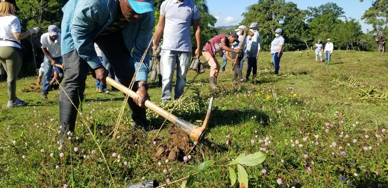 Siembran unas 2,500 plantas en Loma de Cabrera