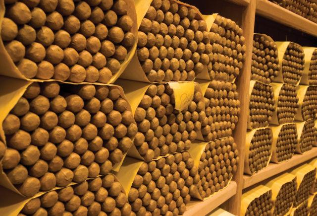 Exportación de tabacos alcanza $1,000 millones de dólares en 2020