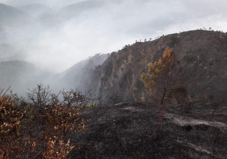 Bomberos forestales extinguen y controlan incendio en El Pinar, Ocoa