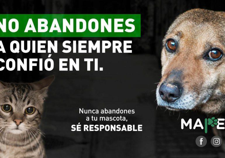 Desarrollan campaña de concientización para no abandonar a los animales