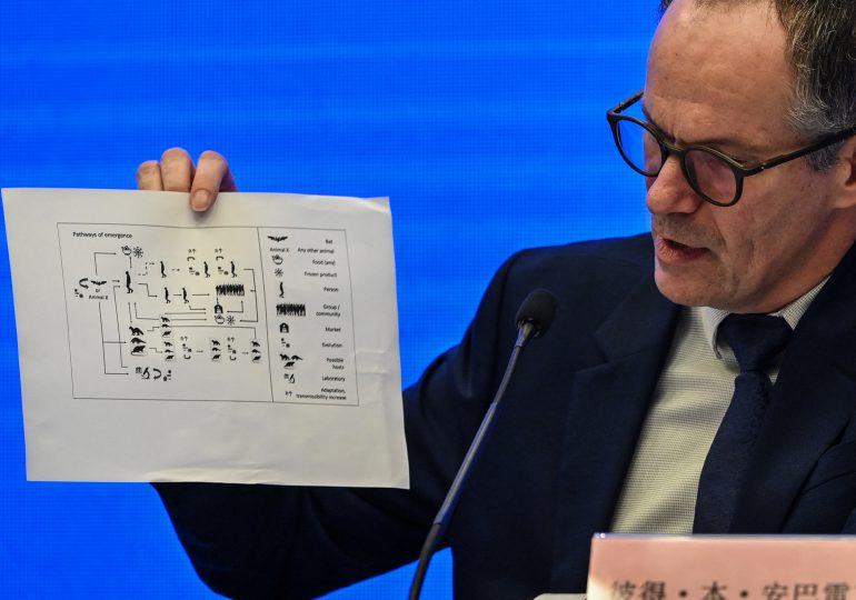 """OMS: """"es extremadamente improbable"""" que el covid-19 se deba a un error de laboratorio"""
