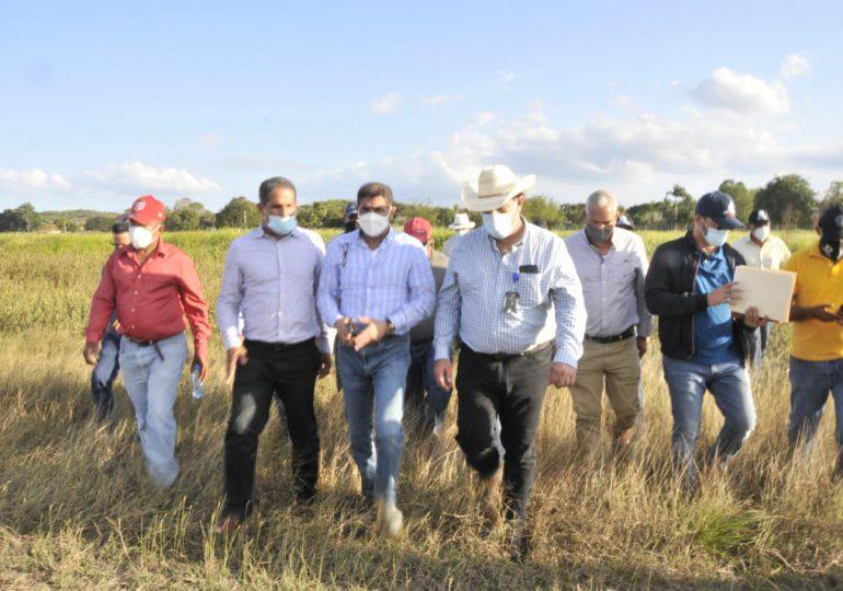 Ministerio de Agricultura anuncia inversión de RD$1 millón en la instalación de planta procesadora de pasto