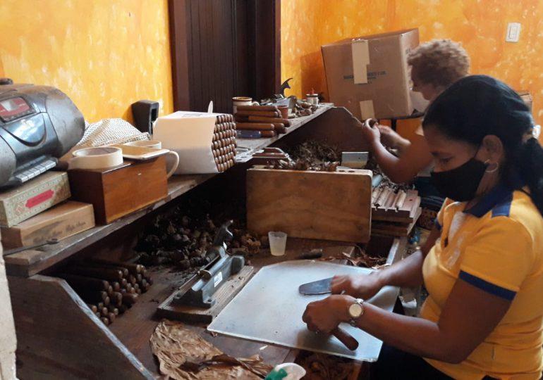 VIDEO | Mujeres tabacaleras se ganan la vida haciendo puros