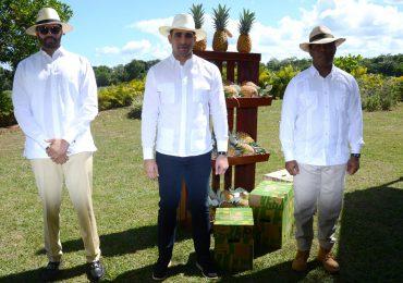 Embajadores dominicanos visitan proyecto de piñas en Monte Plata