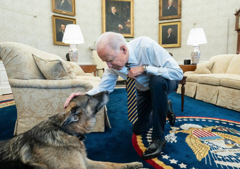 Los perros de Biden se despiden de la Casa Blanca por conducta agresiva