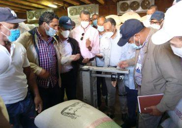 VIDEO | Agricultura compra 30 mil quintales de habichuelas en semillas a productores de San Juan