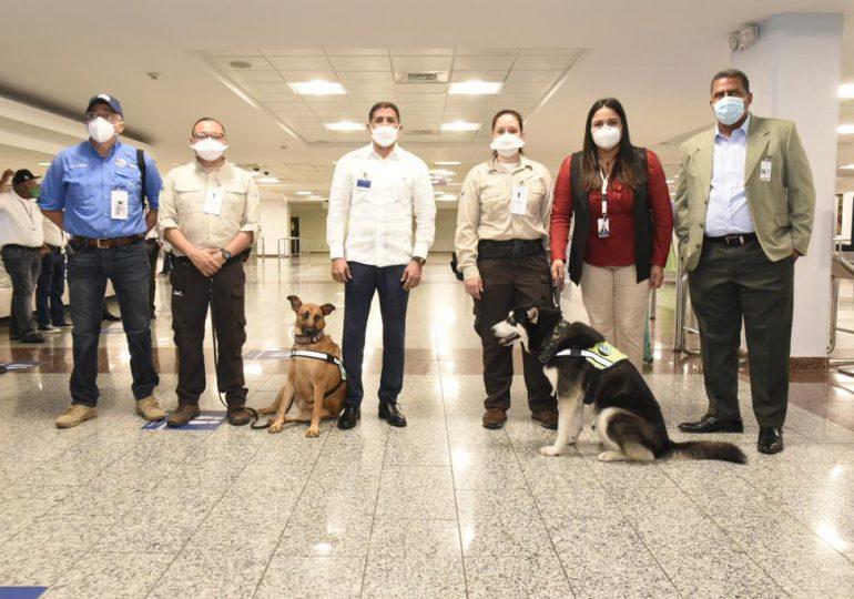Lanzan plan con unidades caninas para detectar vegetales y carnes en equipajes de aeropuertos