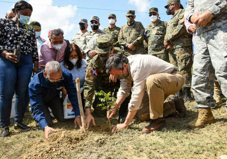 Medio Ambiente celebra Día Internacional de los Bosques  con plantación de árboles en zona fronteriza