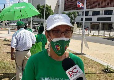 Activistas a favor de las tres causales valoran postura del PLD