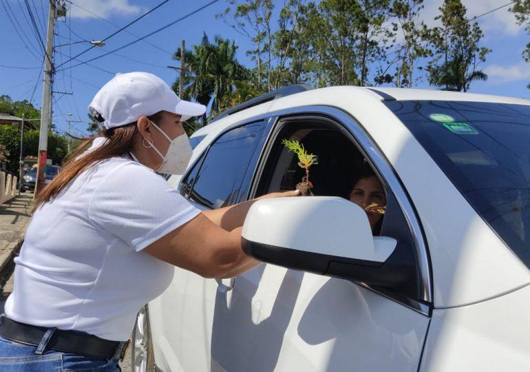 Un árbol para cada visitante que llega a Jarabacoa este en Semana Santa