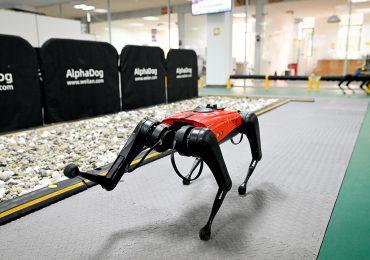 Los perros-robot, el último grito tecnológico en China