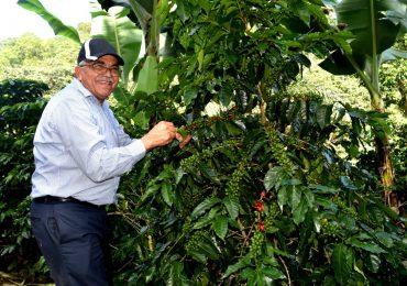 Indocafé ha asegurado a más de 12,757 caficultores y familias al Senasa en su gestión