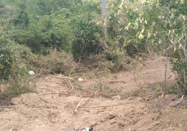 FUNDETROP y SOEPU denuncian que Ministerio de Ambiente abandona Parque Los Humedales de Laguna Prieta en Santiago