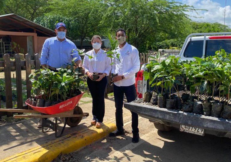 VIDEO | Albadom reforesta y entrega cientos de plantas de café