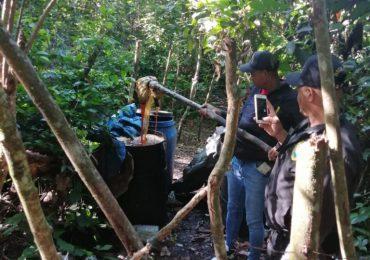 Autoridades desmantelan fábrica clandestina de bebidas alcohólicas en Monte Plata