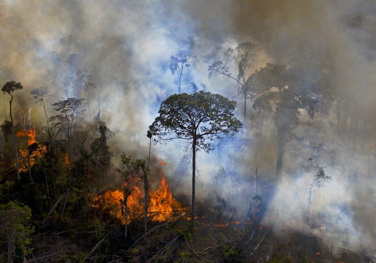 Deforestación en Amazonía brasileña alcanza récord al avanzar 41% en mayo