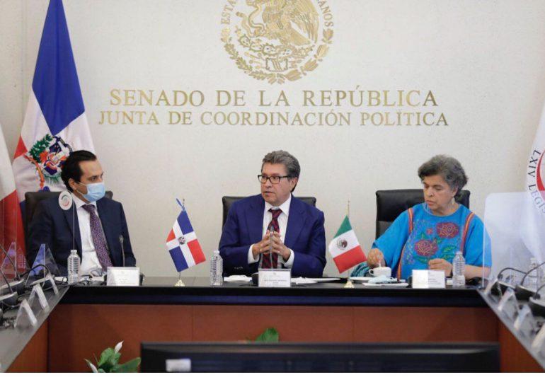 Senador Iván Silva participa como observador electoral  en México