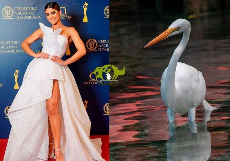 Zoológico Nacional hace su propia colección de memes de premios Soberano
