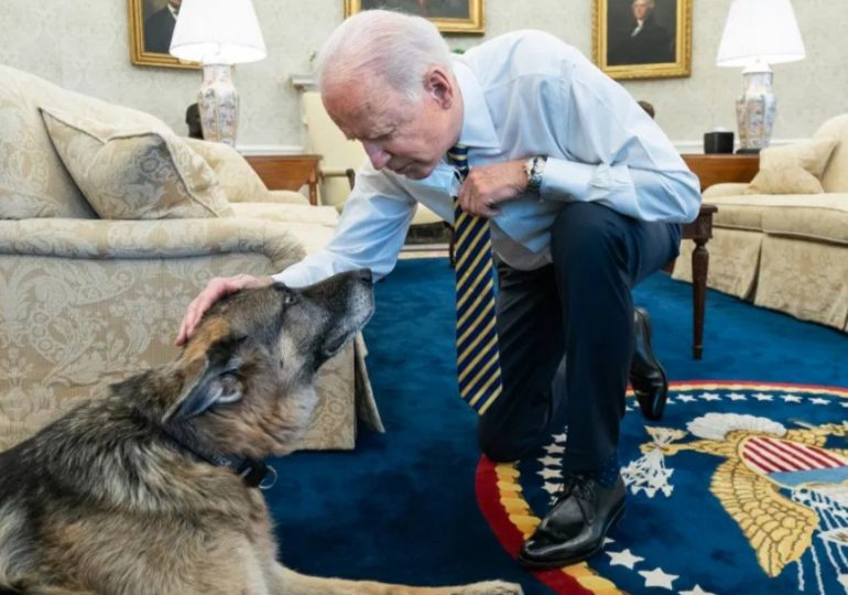 Muere Champ, el perro del presidente Joe Biden