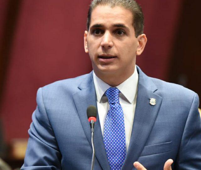 Diputado Víctor Fadul solicita al Estado priorizar estabilidad de las familias dominicanas