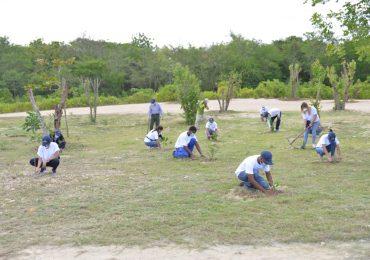 Playa Nueva Romana realiza plantación de árboles en el marco del Día Internacional del Medio Ambiente