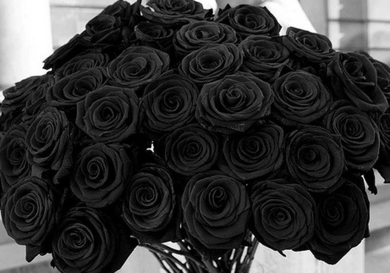 VIDEO | Ángel Rondón, Víctor Díaz Rúa y Tommy Galán se desligan de flores negras enviada a Jean Alain