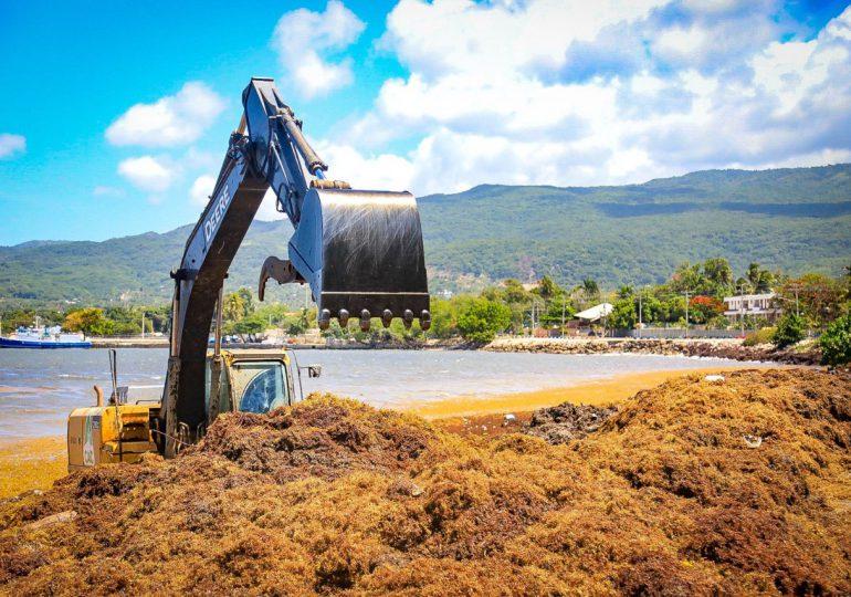Medio Ambiente retira sargazos en playa de Barahora